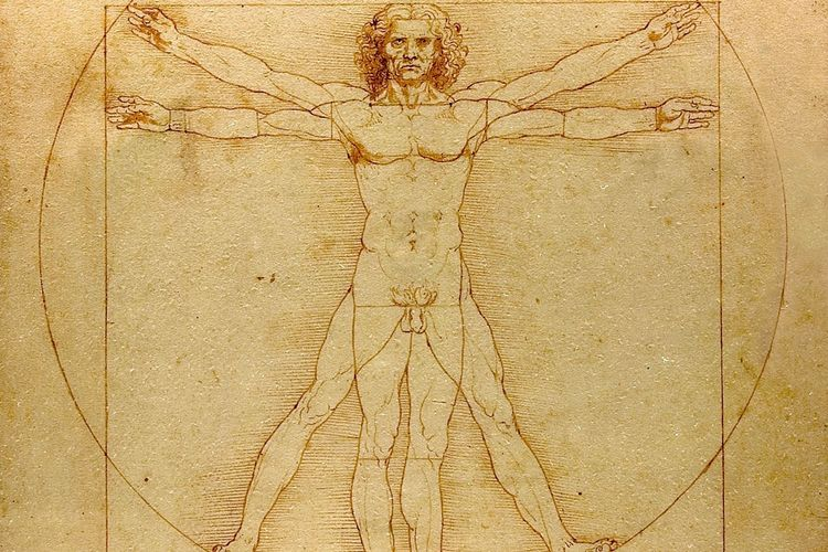 Louvre struggles to gain loans for Leonardo show