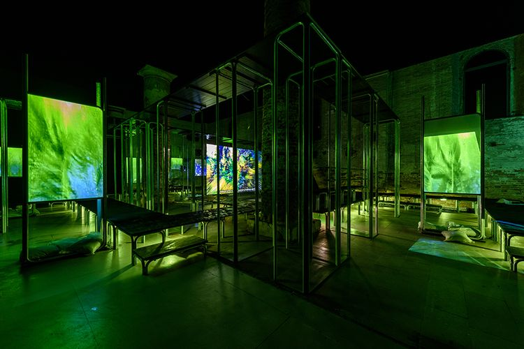 Review | Screen time: digital art eclipses painting in Ralph Rugoff's 'mightily impressive' Venice Biennale show