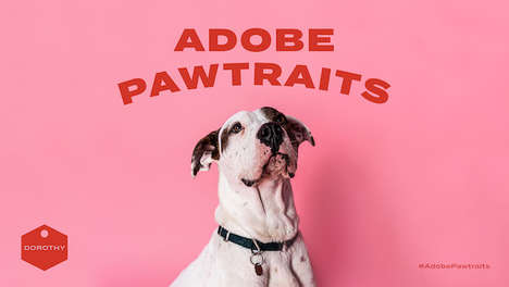 Amusing Rescued Dog Portraits : Adobe Project