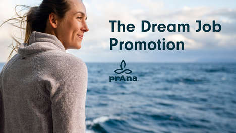 Career-Pursuing Promotions : dream job