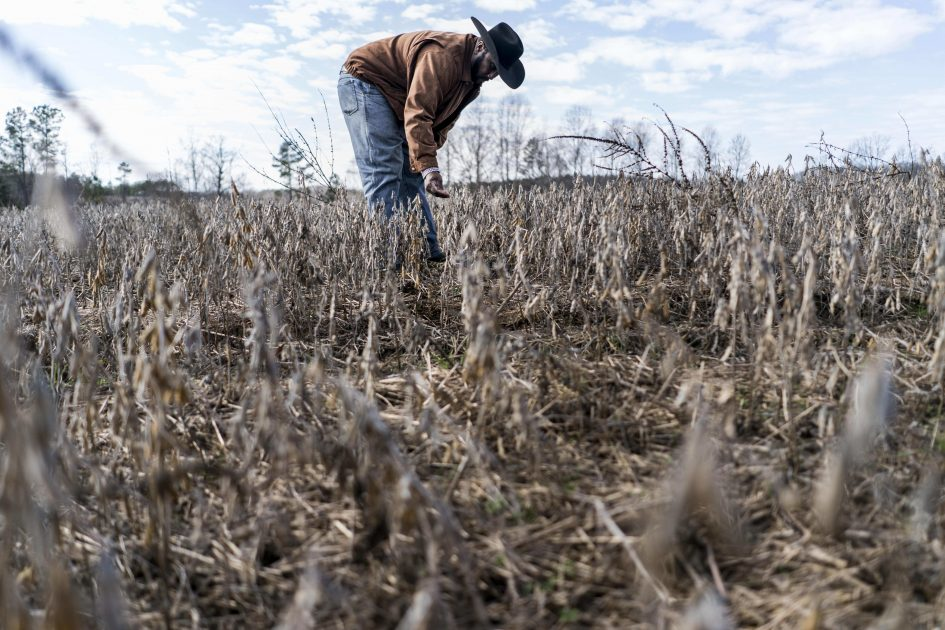 Soybean farmers are working new markets