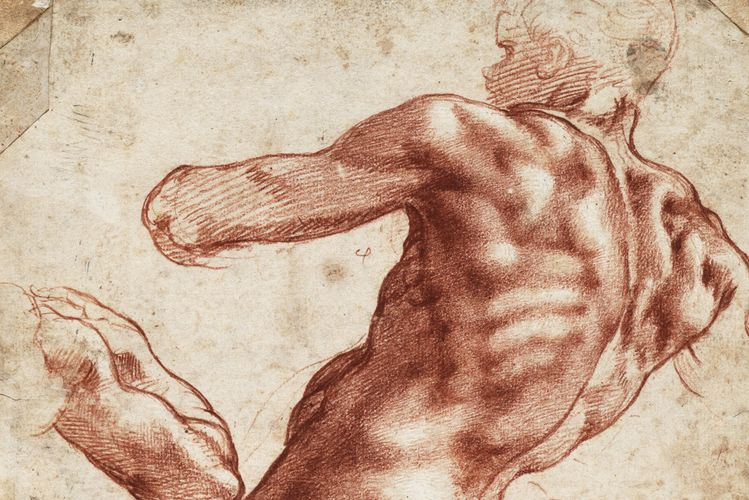 Michelangelo drawings head (Mid)West for Cleveland show