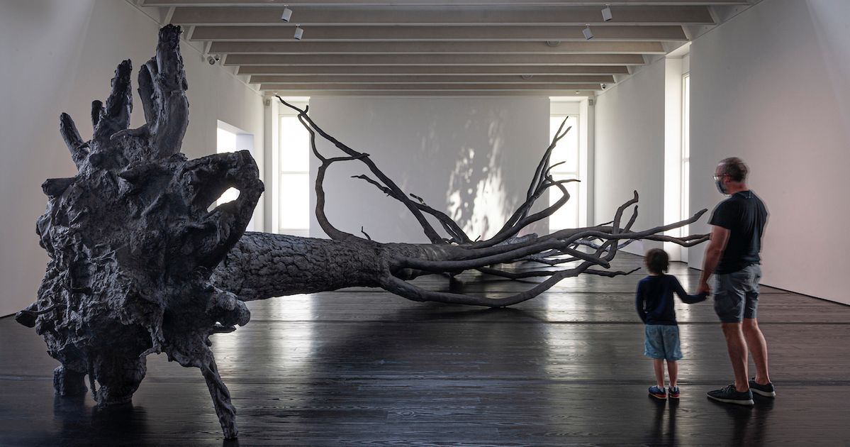 Allora and Calzadilla create a 'haven' from the horrors of the past year at the Menil Collection