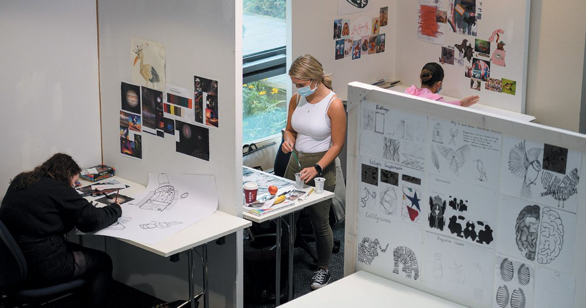 Class struggle: how a year of cancelled degree shows has left fine art graduates in the lurch