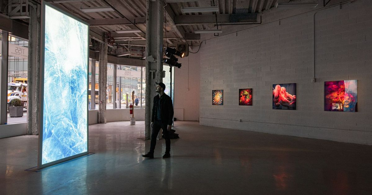 Eco-themed art shows to fill New York's empty storefronts
